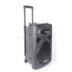 Mobilna kolumna Ibiza Sound moc 700W USB Bluetooth tuner FM