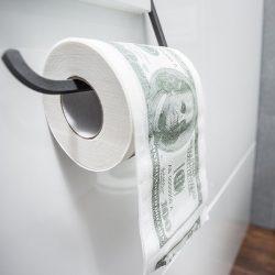 Papier toaletowy Dolar XL długi miękki 100 dolarów NA PREZNET