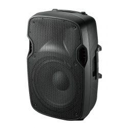 Kolumna pasywna 500W głośnik 12 cali 2 wejścia speak on