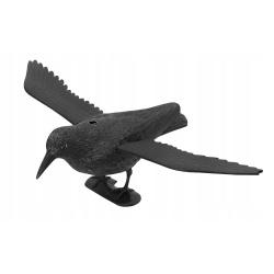 Kruk w locie odstraszacz ptaków gołębi szpaki chroni krzewy i balkon